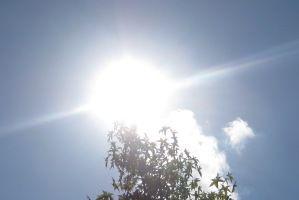 Sonnenschutz am Arbeitsplatz